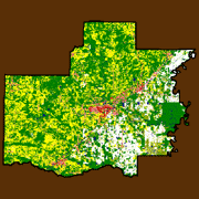 White County Land Use