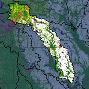 Watershed Land Use Map - Bayou Meto
