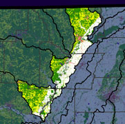 Watershed Land Use Map - Lower Black